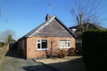 Bungalow in Sports Road, Glenfield...