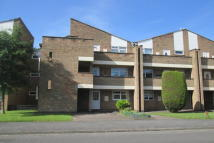 Amesbury Crt Flat for sale