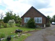 3 bedroom Bungalow for sale in Chequers Road, Noak Hill...