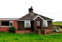 3 bed Detached Bungalow to rent in Walford Back Lane...