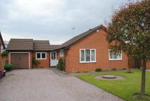 Detached Bungalow in Cheshire Gardens