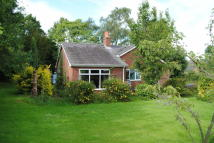 Detached Bungalow to rent in Marchamley, Shrewsbury...