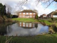Flat to rent in Pond Willow North Trade...