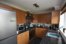 3 bed semi detached house to rent in Cypress Close, Sleaford...