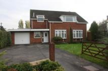 Detached house for sale in Hawthorn Road, Reepham...