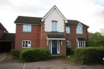 Abbeydale Close Apartment to rent