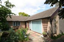 Detached Bungalow in Churchgate Street...