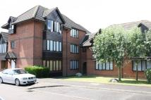 Apartment to rent in Ladywell Prospect...