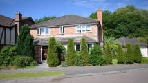 property to rent in Stevenson Drive, Binfield, Bracknell, RG42