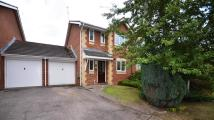 semi detached property to rent in Burnt House Gardens...