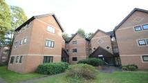 Studio apartment in Wayland Close, Bracknell...