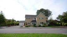 5 bedroom Detached property in Goddard Way, Warfield...