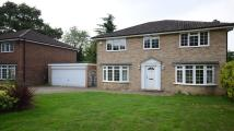 property to rent in Lynwood Chase, Bracknell, RG12