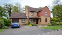 4 bed Detached property to rent in Dianthus Place...