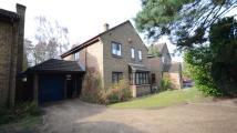 Detached home to rent in Micheldever Way...