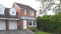 Lammas Mead semi detached house to rent