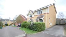 2 bed semi detached house in Neuman Crescent...