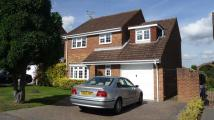4 bedroom Detached home in Hardy Avenue