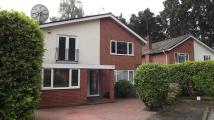 Ravenstone Road Detached property to rent