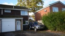 3 bedroom semi detached house to rent in Limecroft