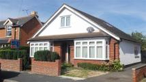 Bungalow to rent in Queens Road
