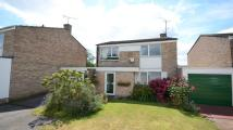 3 bedroom Link Detached House to rent in Bicknell Road