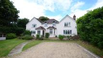 5 bedroom Detached property to rent in Upper Chobham Road