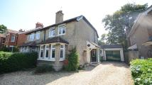 3 bed semi detached home in The Grove