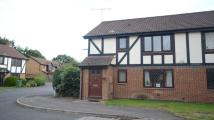 property to rent in Drayhorse Drive