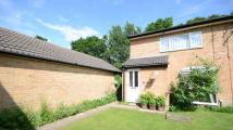 Detached property to rent in Crake Place