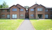 Apartment to rent in Dorset Court