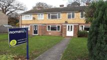 property to rent in Walnut Close