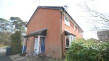 Cluster House to rent in Cheylesmore Park