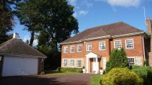 5 bedroom Detached property to rent in Frimley Hall Drive