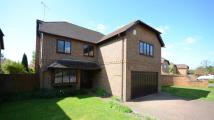 5 bedroom Detached home in Lych Gate Close