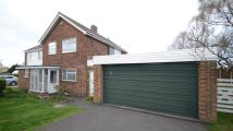 semi detached property to rent in Meadow Way
