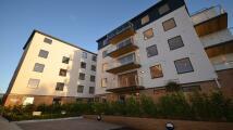 Grosvenor Apartment to rent