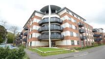 Buccaneer Apartment to rent