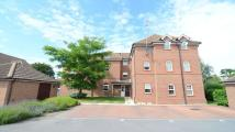 1 bedroom Apartment to rent in Glenwood Court