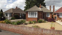 Bungalow to rent in White Acre Road, Mytchett