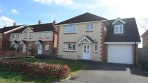 4 bed Detached home to rent in Sherrard Way