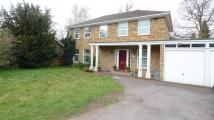 4 bed Detached house to rent in Avenue Road