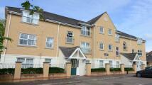 2 bedroom Apartment to rent in Buckingham Court