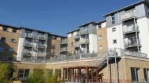 property to rent in Coombe Way