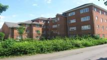 2 bedroom Apartment to rent in Kings Oak Court