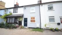 Crane Terraced property to rent