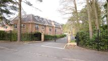 2 bedroom Apartment in Ardwell Close