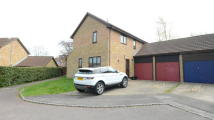 Detached property to rent in Hertford Close