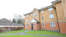 2 bed Flat to rent in Masefield Gardens