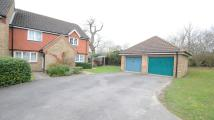 property to rent in Macphail Close